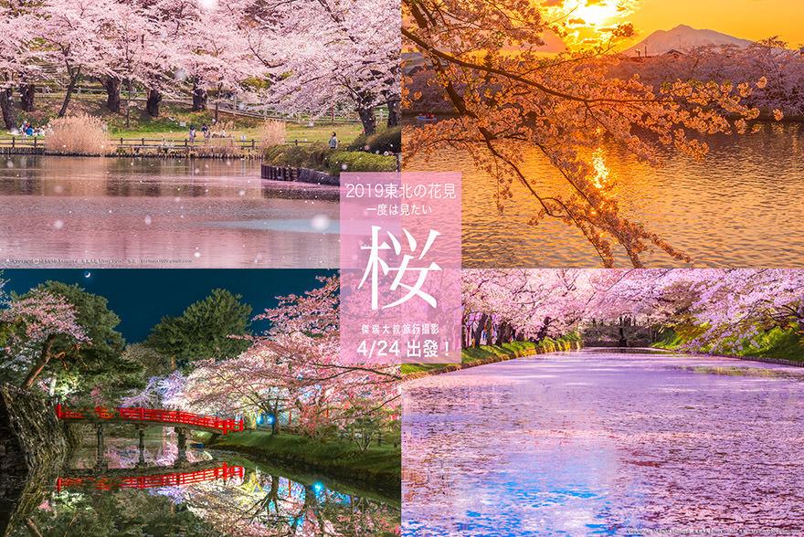 2019東北櫻花團